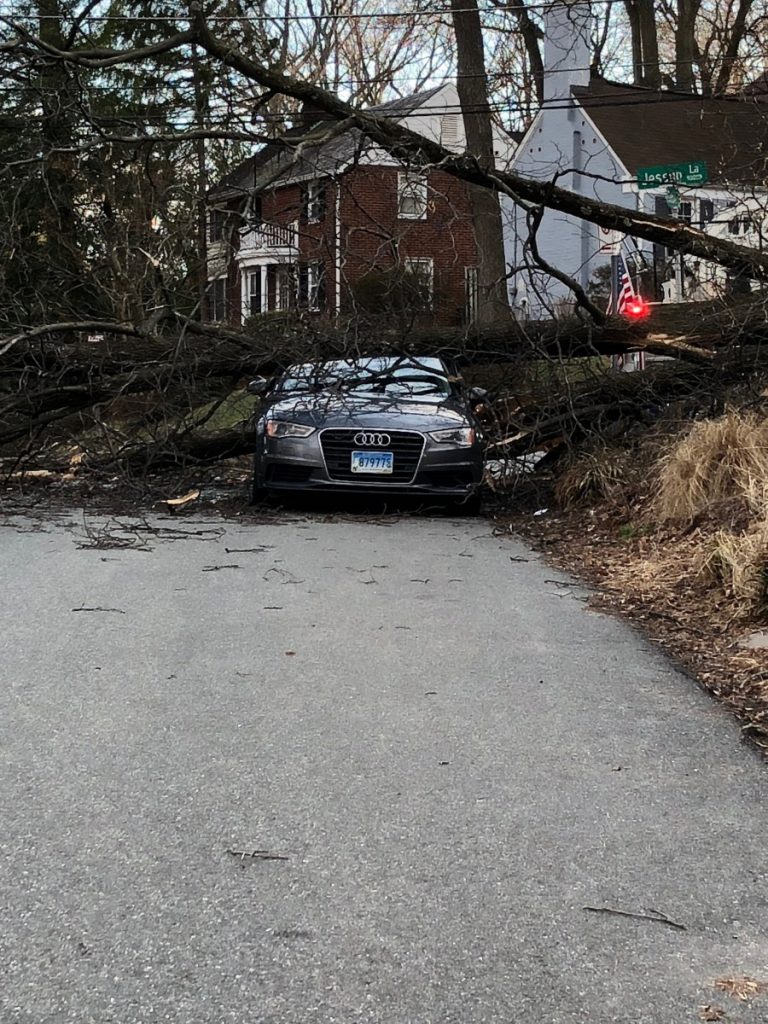 High Wind Storm Hits Area